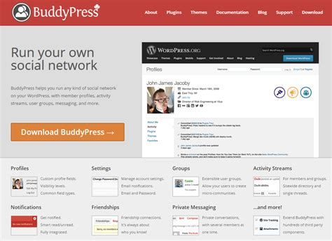 buddypress themes like facebook how to create a website like facebook