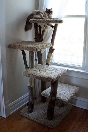 Handmade Cat Trees - cat tree kingdom custom trees