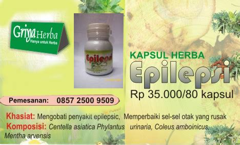 Kapsul Herbal Bronchitis kapsul herbal epilepsi sehatherba