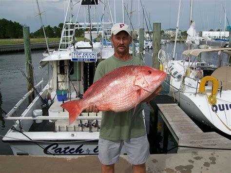 panama city beach florida charter boat fishing charter fishing panama city beach florida deep sea