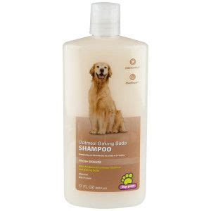 baking soda bath for dogs top paw oatmeal baking soda shoo petsmart this is the shoo i use for