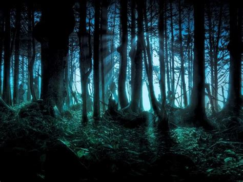 dark forest night image1 jpg scary woods at night scary woods photo dark woods