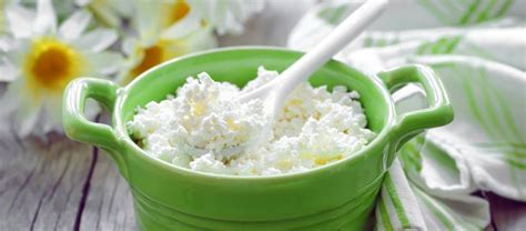 Health Benefit Of Cottage Cheese by 7 Amazing Health Benefits Of Cottage Cheese Cottage