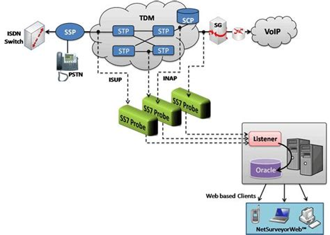 network surveillance system web based network