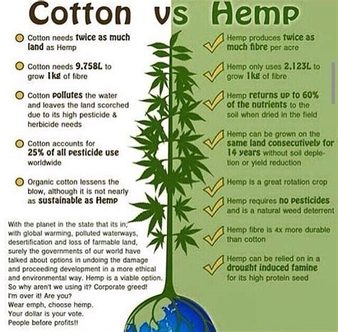 How To Make Paper Out Of Hemp - in a battle between hemp vs cotton hemp always wins