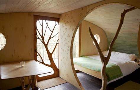 living room treehouse living room treehouse dyfi biosphere featured on greentraveller