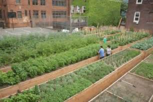 backyard agriculture top 5 farms in new york city inhabitat new york city
