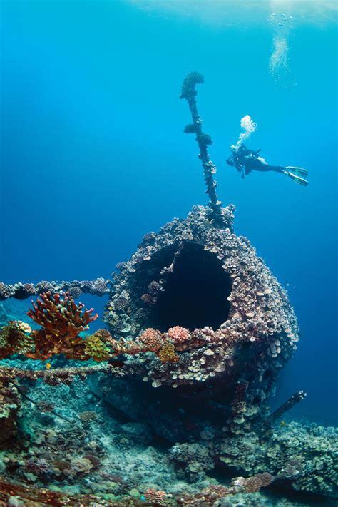 best scuba diving websites scuba diving top 100 best dive for visibility