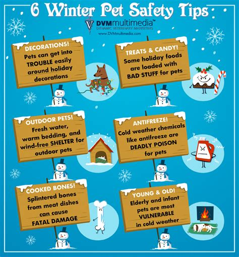 Christmas Decorations For Inside The Home by 6 Winter Pet Safety Tips Las Vegas Veterinary Specialty