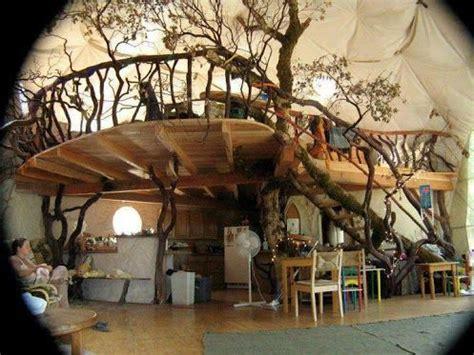 indoor tree house ideas  pinterest modern