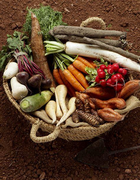cuisine legumes l 233 gumes de saison pour 4 personnes recettes 224 table