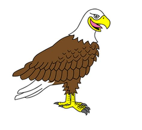 cartoon eagle wallpaper eagle cartoon pictures clipart best