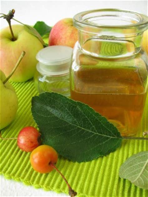 apple cider vinegar for fleas in house easy homemade flea remedies natural home flea remedies