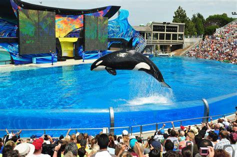 Sea World Seaworld Entertainment Announces Executive Shakeup La Times