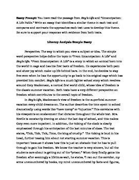 literary analysis sample essays parcc    english   middle