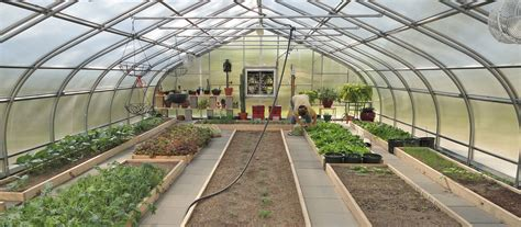 green house buy northpoint greenhouse series rimol greenhouses