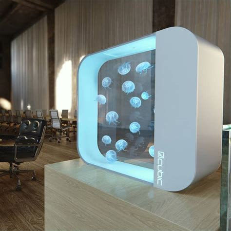 innovative jellyfish designs including jellyfish tank