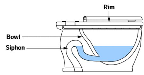 Dispenser Duduk the bowl siphon how toilets work howstuffworks