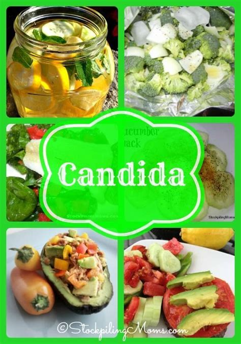 Candida Detox Diet Recipes by 36 Best Candida Diet Plan Images On Anti