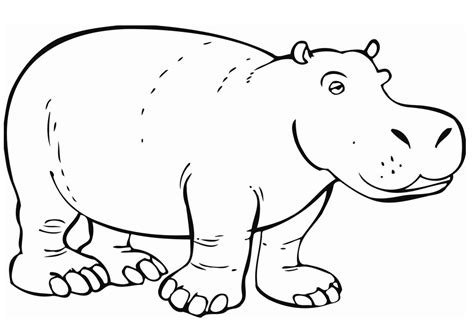 Coloring Pages Hippo free printable hippo coloring pages for
