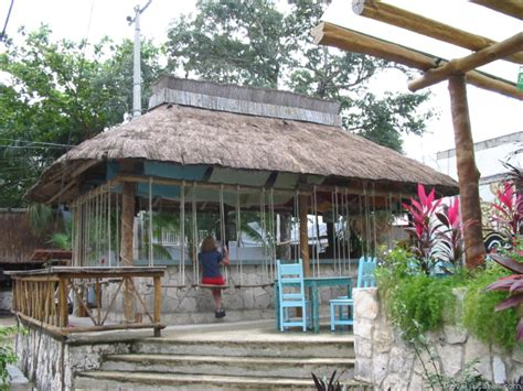 playa del carmen bar with swings playa del carmen restaurants cafe pictures travel yucatan