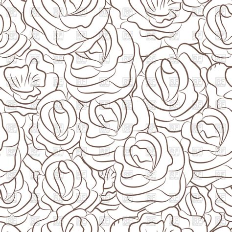 pattern outline roses flowers outlines seamless pattern vector image
