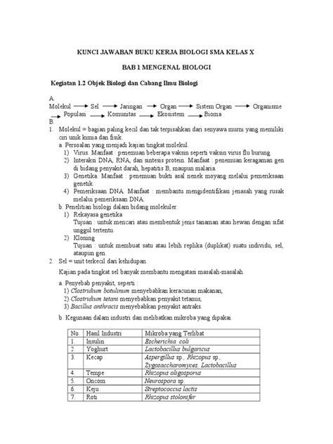 Buku Biologi Kelas 12 Erlangga Pdf - Dunia Sekolah ID