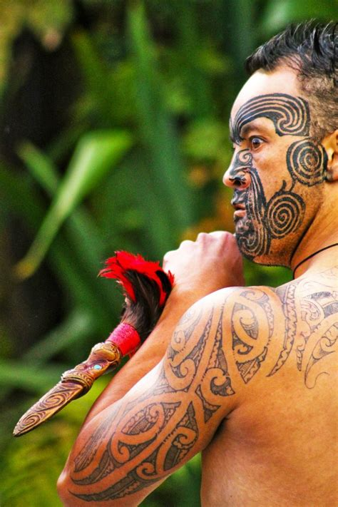 tattoo prices mauritius 2118 best maori images on pinterest maori people new