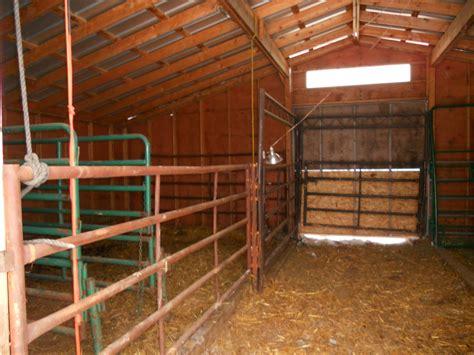 crystal cattle  calving barn