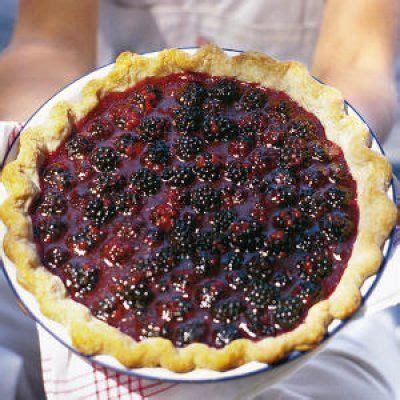 100 blackberry dessert recipes on pinterest blackberry