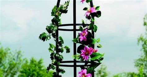obelisks for climbing plants metal garden obelisk climbing plant obelisks climber