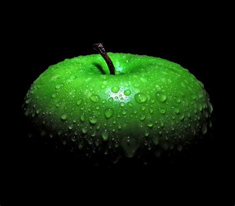 apple wallpaper photographer 43 best images about black n green on pinterest electric