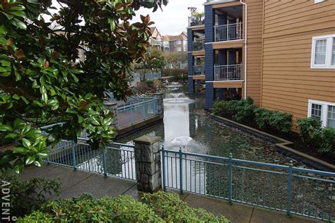 lakeside bedrooms apartment rental coquitlam lakeside terrace 1189 westwood advent