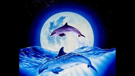 unicorn kid pure space dolphin dance  hd