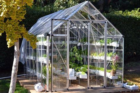 coltivazione idroponica in casa coltivazione idroponica frutta e verdura senza terra