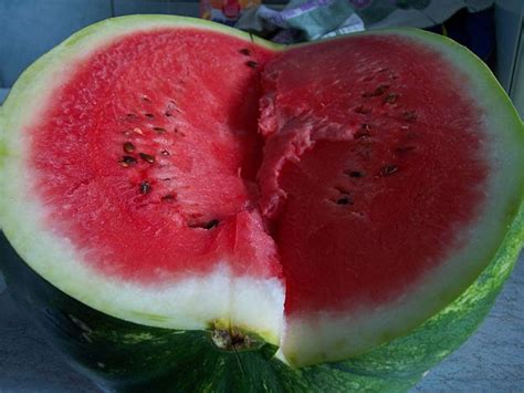 Melon Detox Pdf by C 243 Mo Adelgazar Con Sand 237 A C 243 Mo Perder Peso Con Sand 237 A
