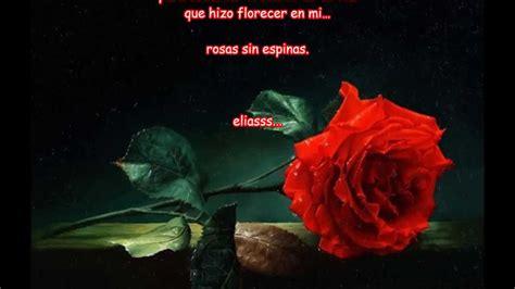 imagenes de rosas con espinas rosas sin espinas eliasss youtube