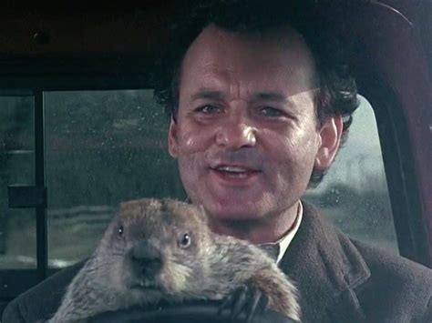 groundhog day repeat sky is quot groundhog day quot on repeat in honor of
