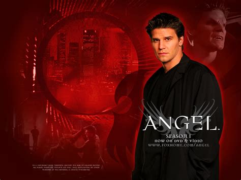 scow angle angel buffy s spin off dvdbash