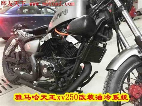 motorcycle oil cooler oil engine radiator system full set  lifan lf  qjiang qj