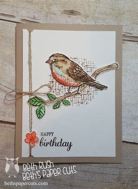 best 25 ideas on bird beth s paper cuts birds and blooms watercolor card