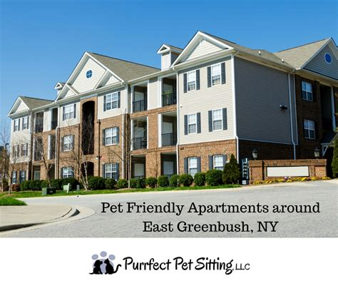 carthage ny pet friendly apartments pet friendly apartments near east greenbush ny purrfect pet sitting llc