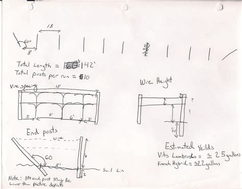 Site Layout Drawing
