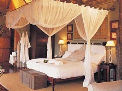 safari bedroom ideas for adults 35 best images about canopy beds on pinterest royal