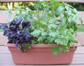 Growing Herbs by Growing Herbs