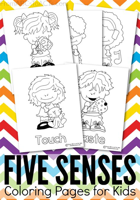 senses coloring pages preschool five senses printable coloring pages from abcs to acts