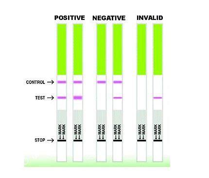 test dell ovulazione test stick di ovulazione test canadesi come funzionano
