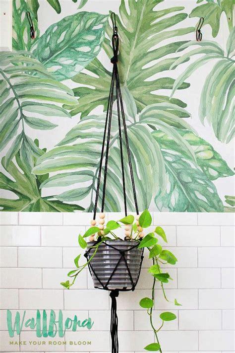 leaves wallpaper ideas  pinterest tropical
