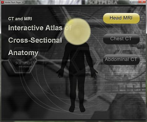 Cross Sectional Anatomy Ct And Mri by Ct And Mri Interactive Atlas Of Cross Sectional Anatomy