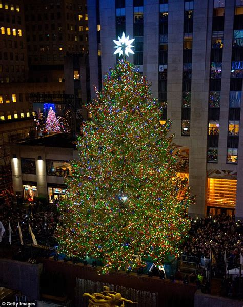 when do they light the nyc tree rockefeller tree arrives in new york city daily mail